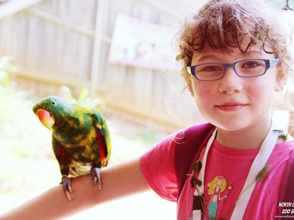 Abi W  Nick The Eclectus Day Camp 2016 2