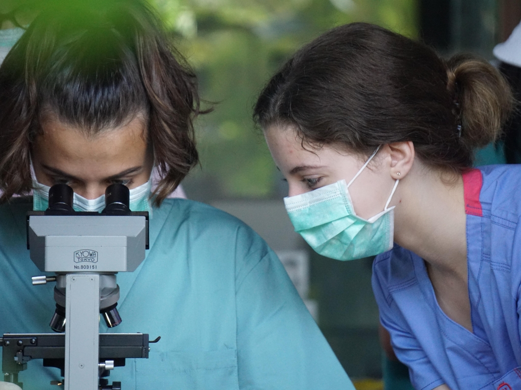 Broadreach Bali Vet Medicine 3
