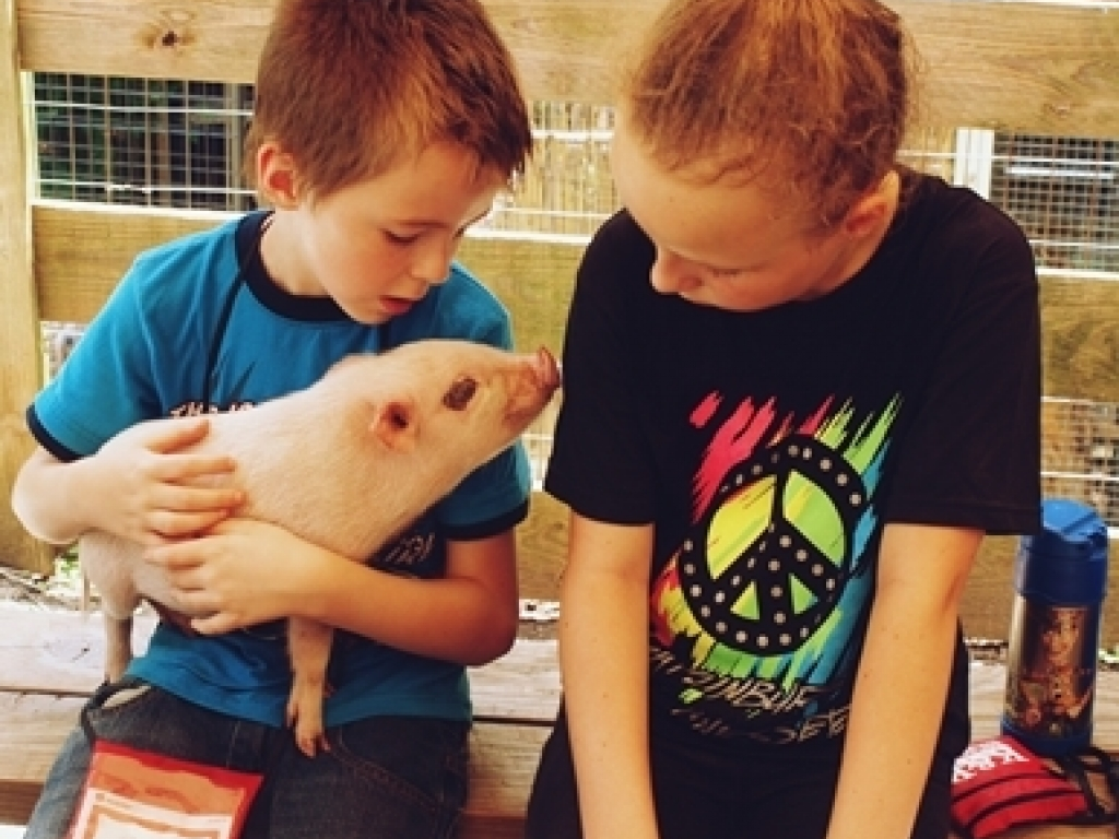 Kids W  Pig Day Camp 2016 25
