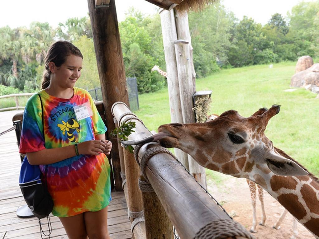 girl-giraffe-camp-gallery-web