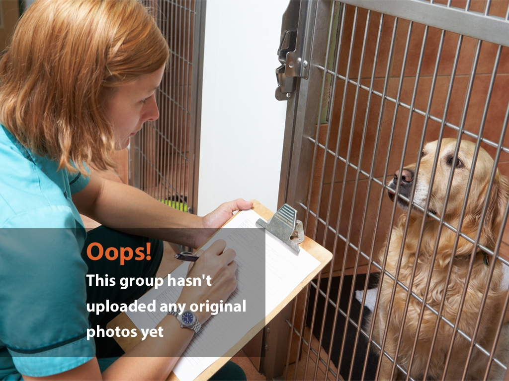 Girl Clipboard Dog Oops Photo – A Girl Writing on Clipboard Dog in Kennel