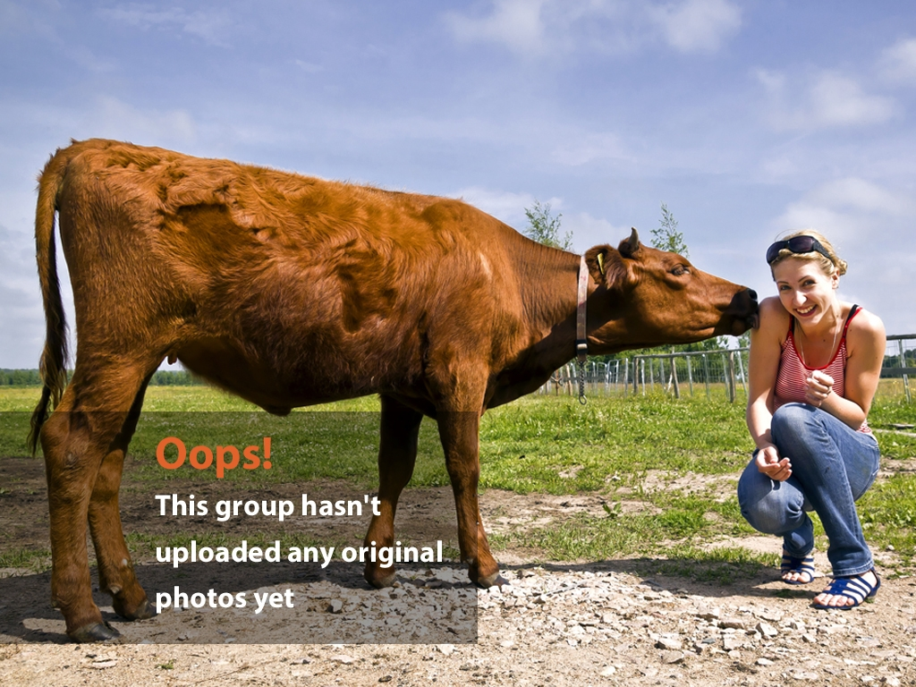 Girl with Steer Outside – Girl Getting Licked By Steer