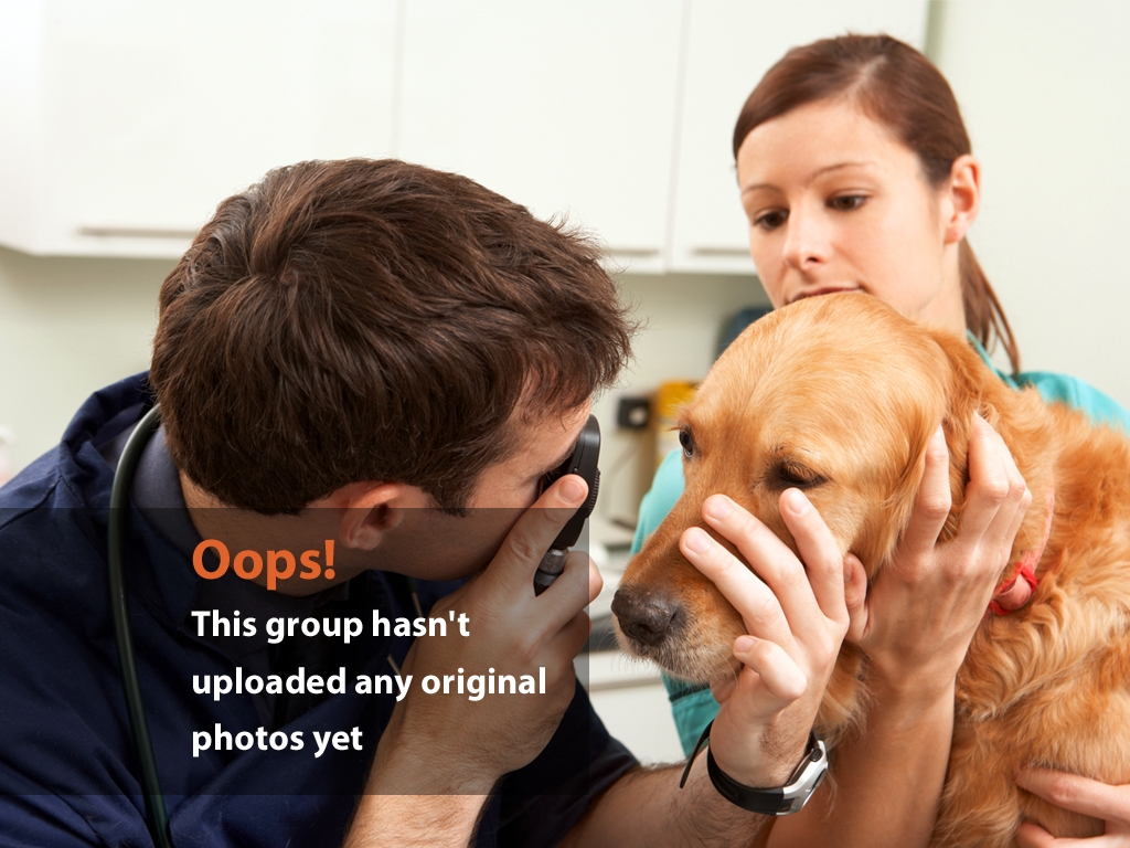 Girl with Vet and Dog Clinic Oops Photo – Dog Exam