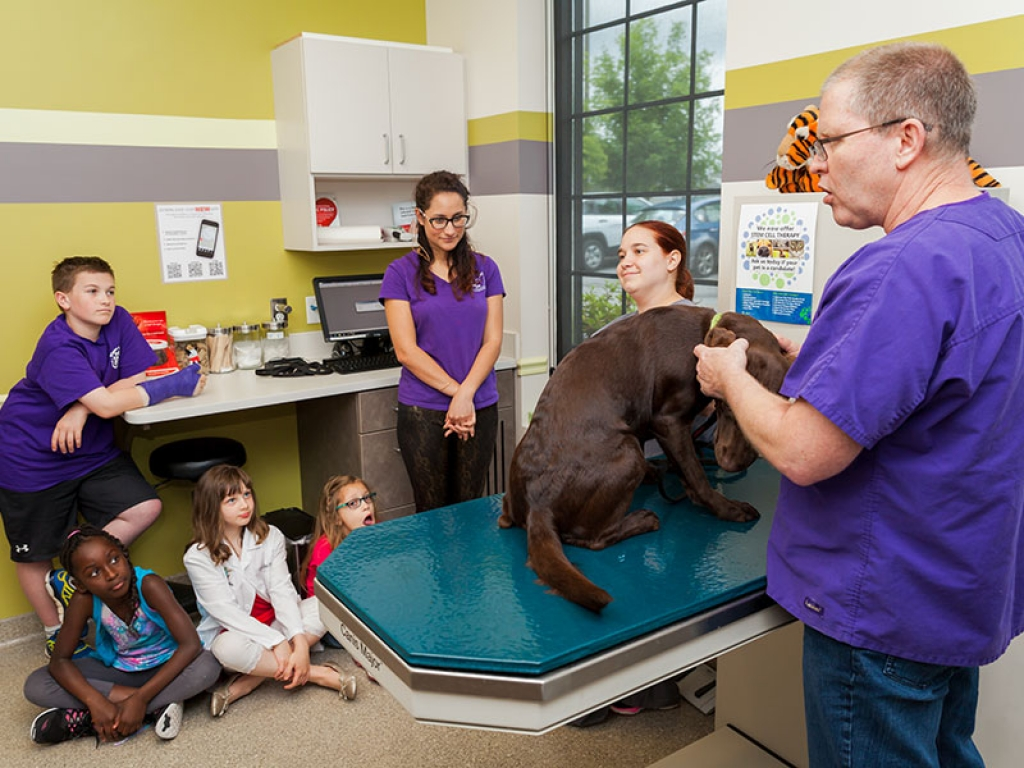 veterinarian-campers-dog-exam-web