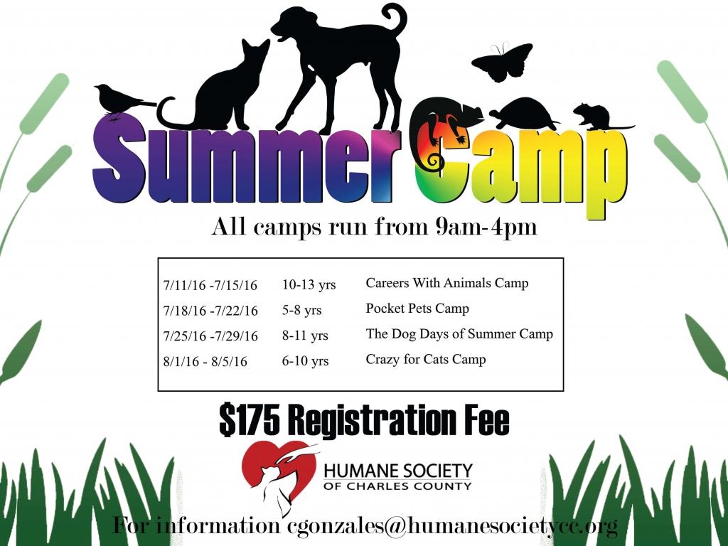 webpage-HSCC-Summer-camp-flyer 2