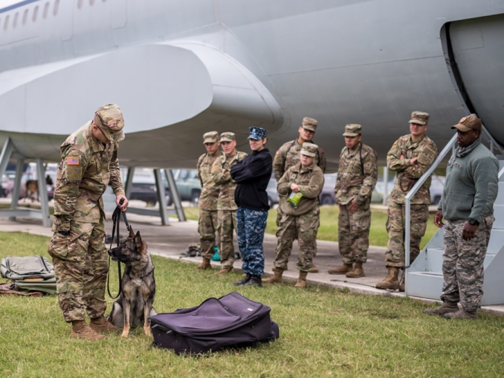 Mwd Suitcase Training