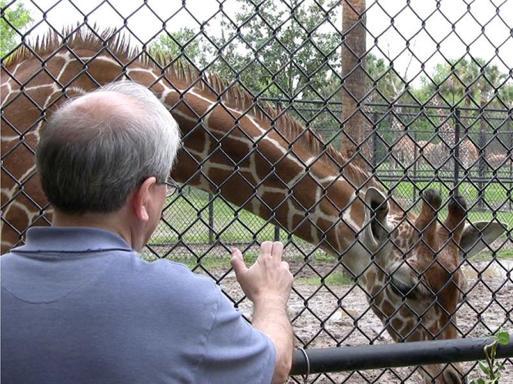 zoo-veterinarian-giraffe-gallery-web